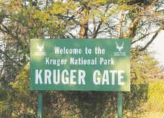 More than 100 000 South Africans entered SA Parks free of charge