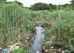 Good News story-Residents clean up filthy river-BBR sets an example
